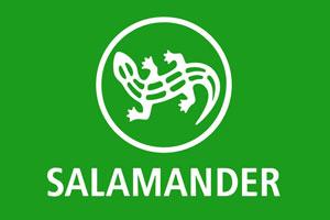 Обувь Salamander