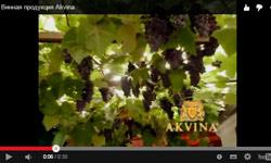 Рекламный ролик для Винной продукции АКВИНА